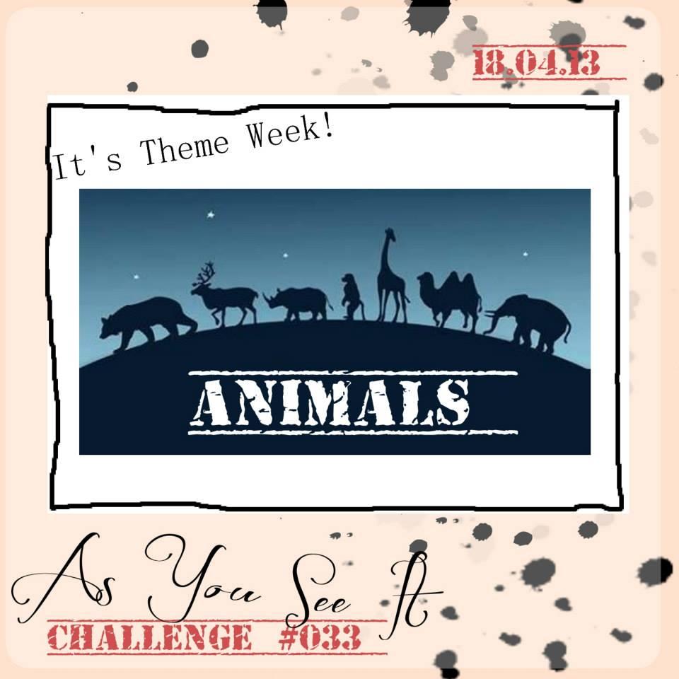 AYSI-Challenge-033