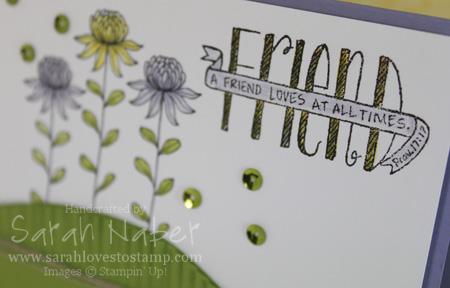 Sale-A-Bration-Flowering-Fields-Closeup