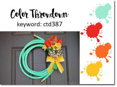 color throwdown 387